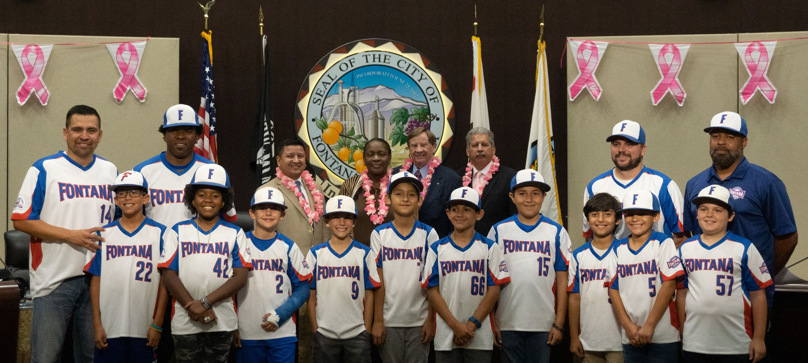 Pony Youth Baseball Leagues Recognition 1